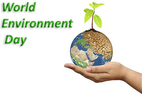 Tourism and environment short essay