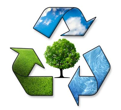 Technology impact on environment article